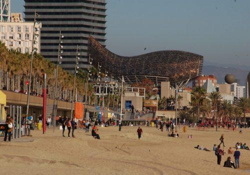 Barcelońska plaża w grudniu; zdj. Maciej Konigsman